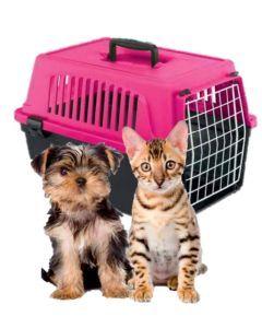 guacal para mascotas atlas 10 rosa-Ciudaddemascotas.com