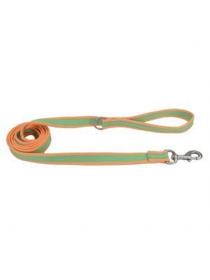 Coastal perro pro lima con naranja correa small-medium 3/4