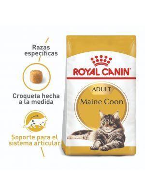 Comida para gato Royal Canin Maine coon-ciudaddemascotas.com