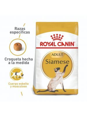Comida para gato Royal Canin Feline Siamese-ciudaddemascotas.com