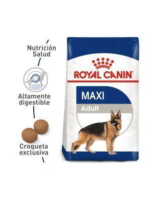 Royal Canin Size Health Nutrition Maxi Adult-Ciudaddemascotas.com
