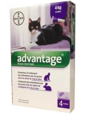 Advantage Pipeta para Gatos de 4 kg a 8 kg