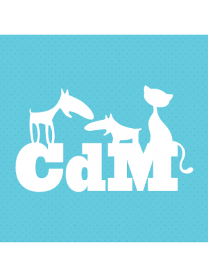 Iman CdM