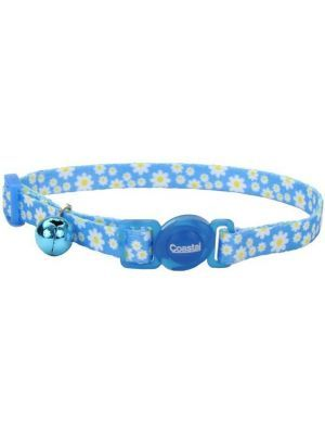 Coastal collar gato fashion flores daisy azul