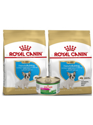 Comida para Perros Royal Canin Bulldog Combo-Ciudaddemascotas.com