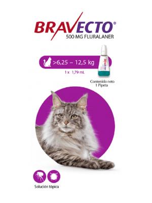 Bravecto Para Gato Spot on 6.2 - 12.5 Kg - ciudaddemascotas.com