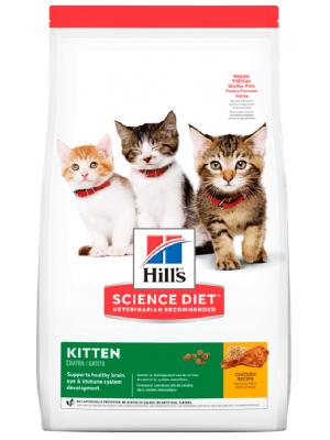 Comida Hills Kitten Healthy Development - ciudaddemascotas.com