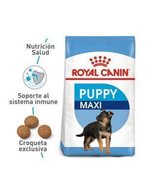 Comida Royal Canin SizeHealth Nutrition Maxi-Ciudaddemascotas.com