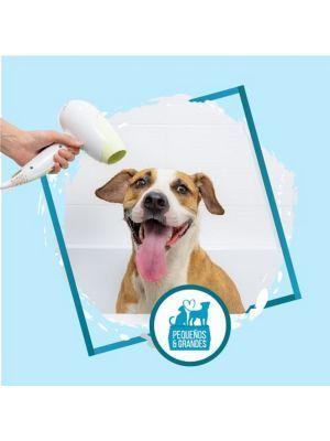 Peluquería profesional para perros a domicilio- Ciudaddemascotas