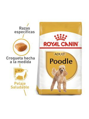 Royal Canin Breed Health Nutrition Poodle Adulto
