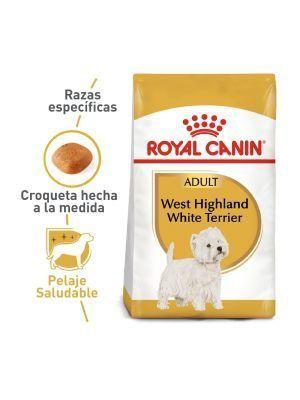 Comida para Perros Royal Terrier - Ciudadddemascotas.com