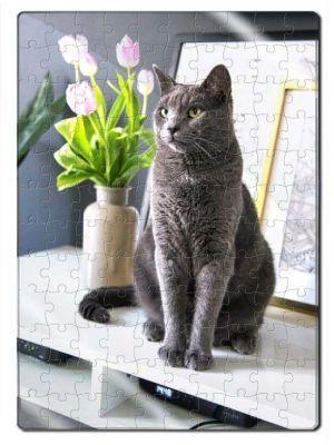 Rompecabezas Acrílico Gato Azul Ruso