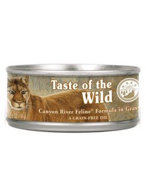 Comida para gatos Taste of The Wild Lata-ciudaddemascotas.com