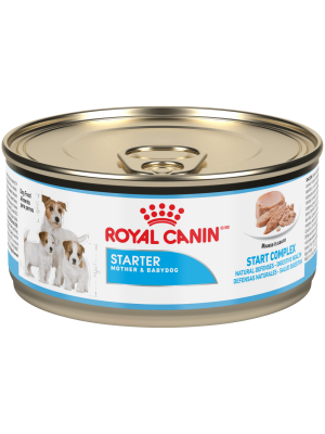 Royal Canin Dog Lata Starter Mousse x 165g