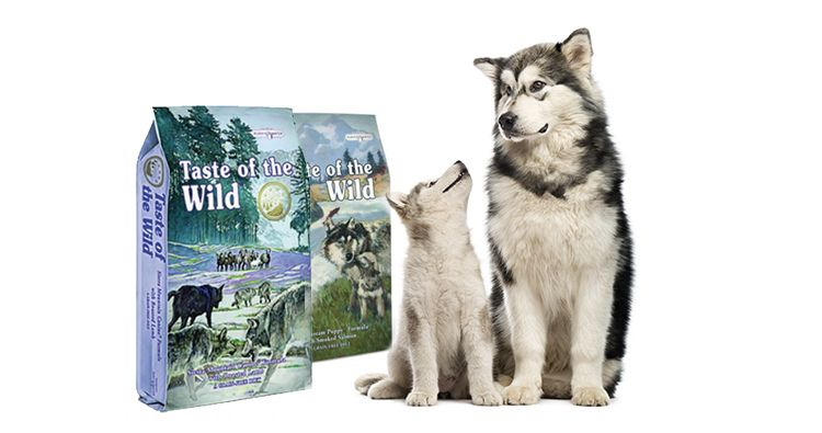 Taste of the wild para perros